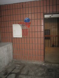 "Our ""court"" hoop"